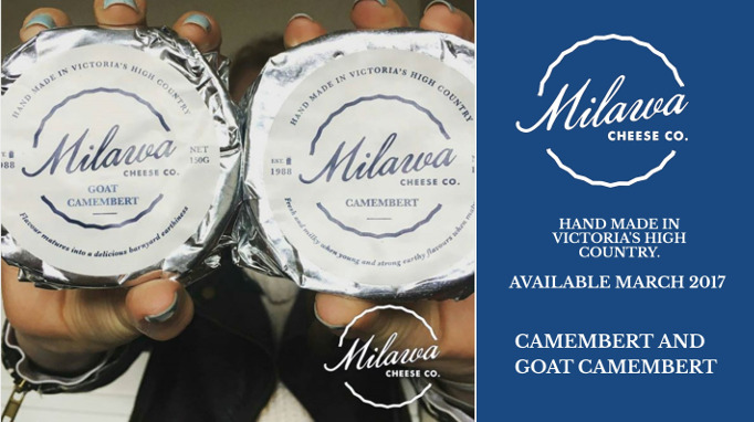 New Milawa cheese co 150 gram Camembert and goat camembert