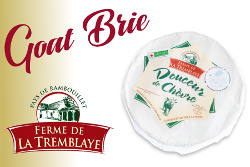 Farmhouse goats milk brie